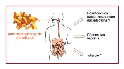 Unite Microbiote
