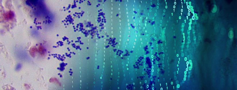 algorithms microbes AI