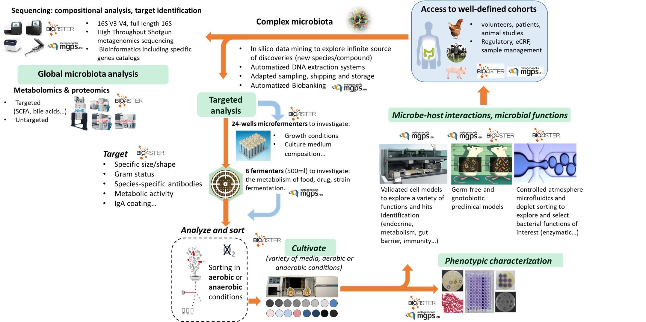 MICROBIOTA; ISOLATOR .PROTEOMICS. MICROFLUIDICS ;METABOLOMICS