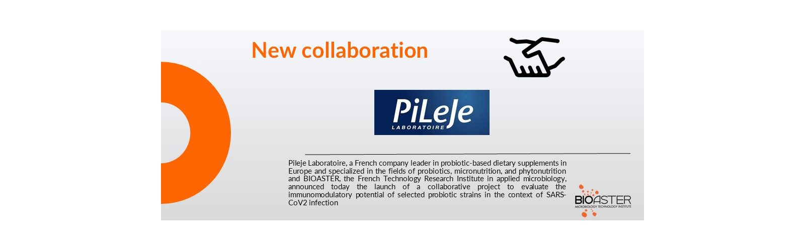 New collaboration with Pileje